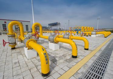 苏里格南项目天然气处理厂