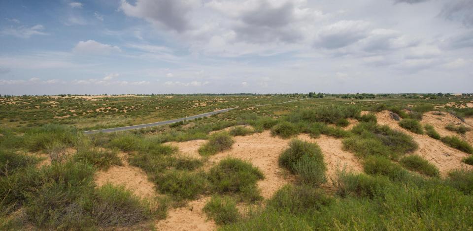 苏里格南气田周边围绕着沙丘和草原